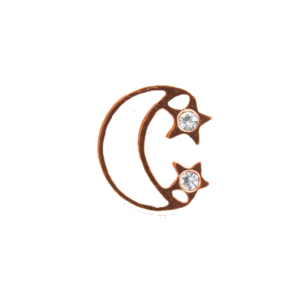 rose-gold-moon-and-star-charm